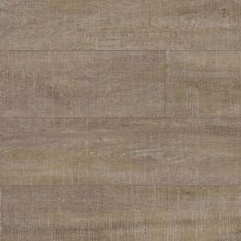 Harbor Oak 50lvp611 Coretec Xl Collection By Us Floors