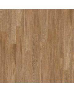 Duomo Premio Plank   0490V_00228