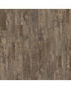 Cortona Premio Plank   0490V_00575