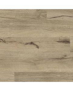 Augustine Oak | 50LVP808 | COREtec One Collection by US Floors